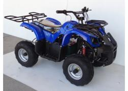 Electric ATV Volt hunter