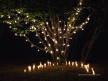 Гирлянды из ламп для ярких праздников и событий в аренду