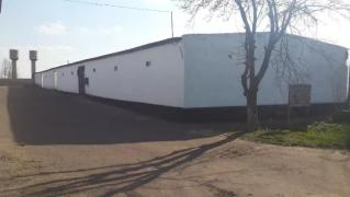 Industrial premises (base, warehouse, facility)in the a/d Kiev-Odessa