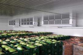 Овочесховища. Холодильні та морозильні камери